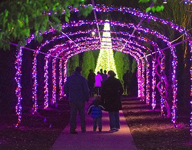 NOV. 25-JAN. 1 - Holiday LIGHTS at Cheekwood in Nashville, Tennessee. Head to this annual event to see over ONE MILLION LIGHTS!