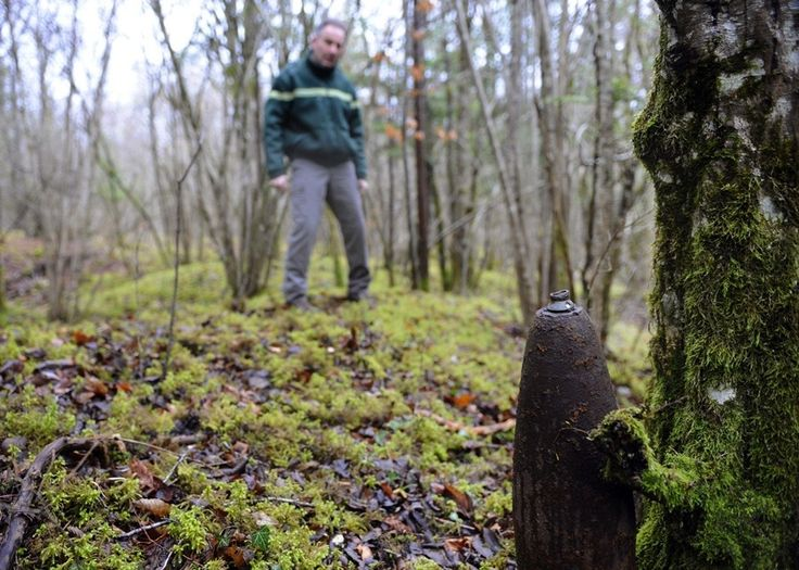 A member of the ONF (Office National des Forets) looks at an unexploded shell in a forest in Vaux-devant-Damloup, near Verdun, on March 24, 2014. In the forest of Verdun, full of this kind of vestiges of the First World War, the former battlefield attracts thieves, to the chagrin of the authorities and archaeologists.