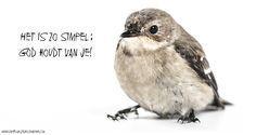 Het is zo simpel: God houdt van je! #God, #Liefde, #Vertrouwen https://www.dagelijksebroodkruimels.nl/het-is-zo-simpel-god-houdt-van-je/