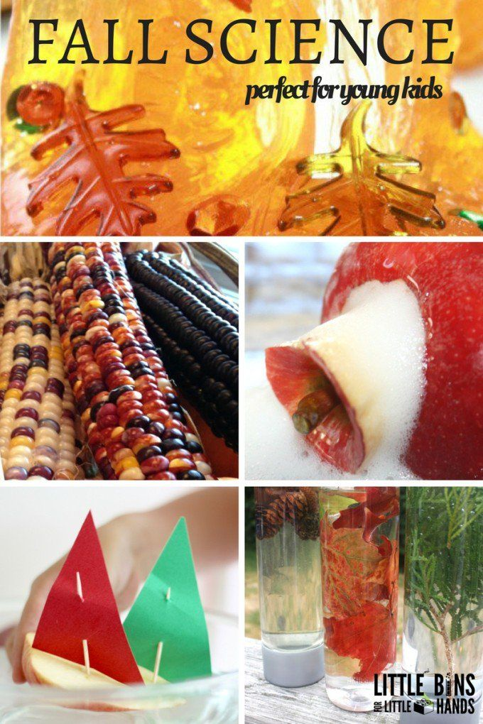 Fall science and sensory play for kids. Perfect fall activities for toddlers, preschoolers, and kindergarteners. Nature activities with leaves, baking soda science, discovery bottles, and more.