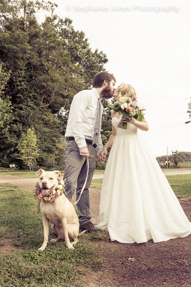 wedding destinations in new jersey%0A vintage country groom and bride The Inn At Fernbrook Farms New Jersey  Stephanie Jones Photography NJ wedding photojournalist dog in wedding  floral collar