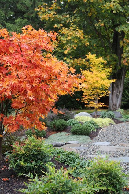 Think beyond fall. Evergreens are an essential component of any four-season landscape, and as much as this garden is stunning in autumn we c...