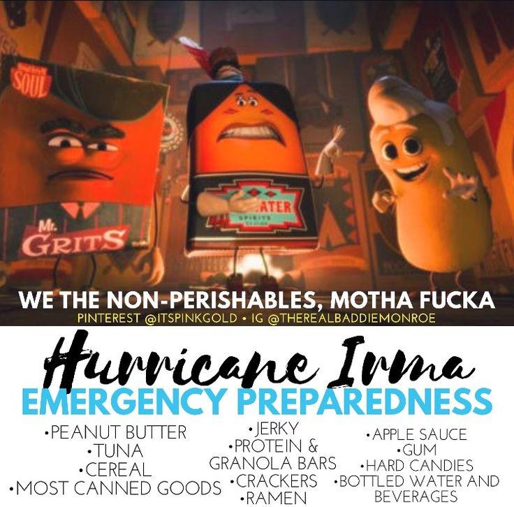 Hurricane Preparedness food item list. Non-Perishables. Be safe! I love you all!