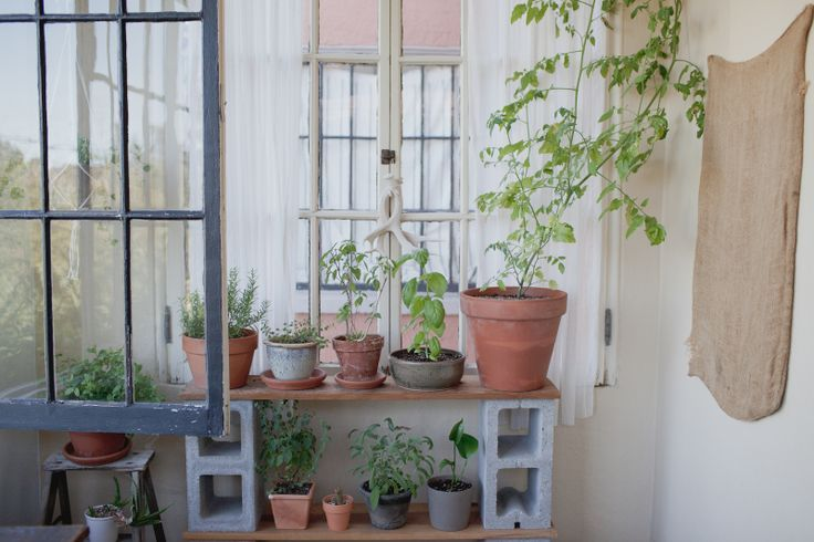Pin by great cool on home pinterest plant stands for Cinder block plant shelf