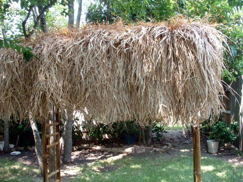 17 Best Images About Tiki Huts Amp Bars On Pinterest