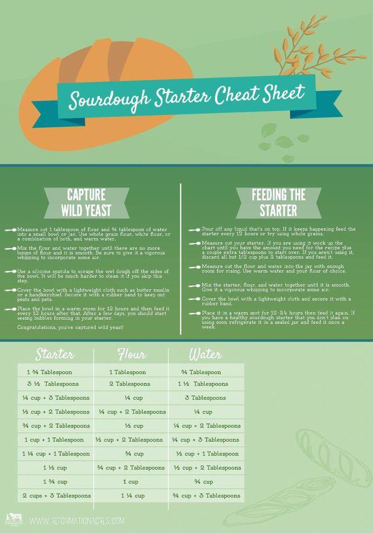 Sourdough Starter Cheat Sheet.