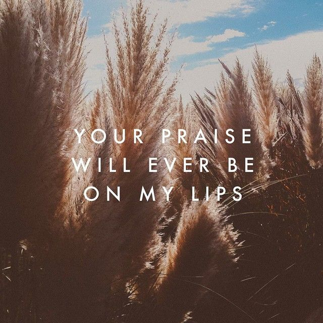 "Beautiful song.  ""Your Praise Will Ever Be On My Lips"" by Bethel. Actually, I think the song is called ""Ever Be"", but I'm not positive. I just wanted to give credit to Bethel."