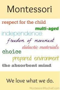 maria montessori natural laws of development Making known the natural laws of growth in order spreading and upholding the pedagogical principles and practice formulated by dr maria montessori ensure the independence of the child's personality through successive stages of growth until he reaches full normal development by means.