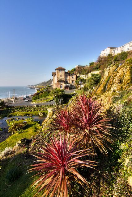 Ventnor Cascade Gardens Portrait 190213 by Visit Isle of Wight, via Flickr