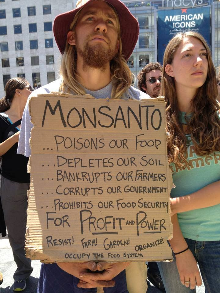 Monsanto evil corporation http://miami-water.com/blog/130/pesticides-radiation-in-water-polluting-oceans-lakes-rivers-our-food-water/