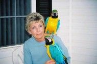 I really need to find my blue and gold macaw parrots a good home soon. And you won t find macaw parrots