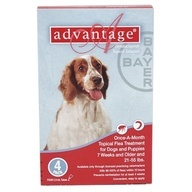 4 MONTH Advantage Flea Control Red: For Dogs 21-55 lbs. - buy your dogs supplies from dog lovers just like you...  http://www.pestchaser.com.au/fleas.html