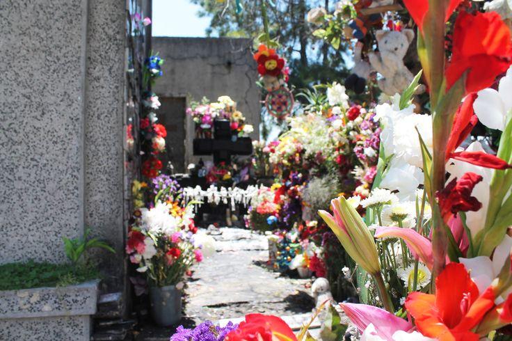 Cementerio General SCL.