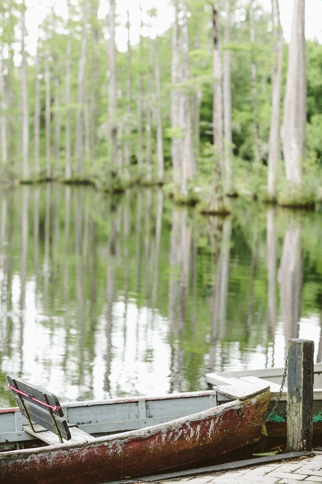 Charleston, SC. The notebook. Swamp. Things to do in Charleston. Editorial photo