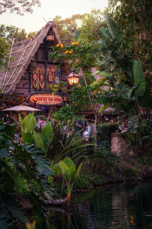 A Tropical Hideaway   Disney, Walt disney world and Happy