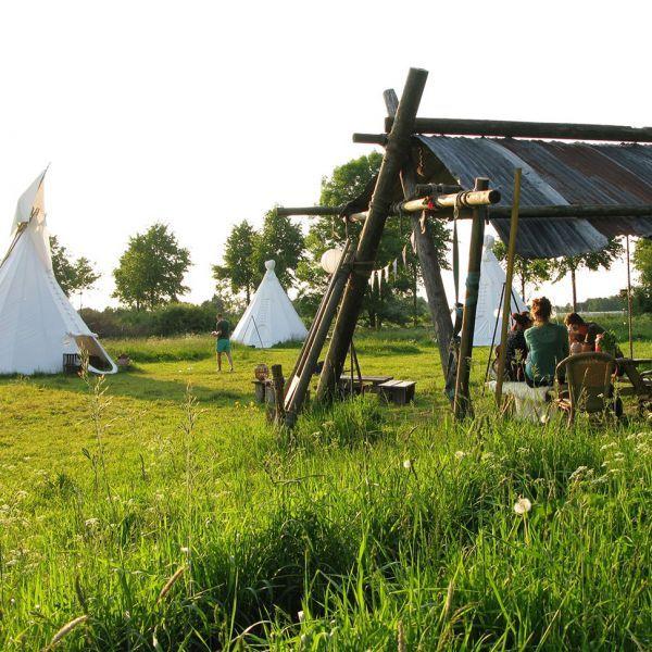 http://www.bijzonderecamping.nl/camping/in-het-wijland