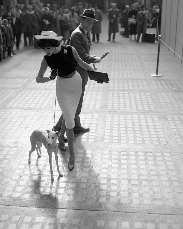 Simone with Whippet | From a unique collection of black and white photography at https://www.1stdibs.com/art/photography/black-white-photography/