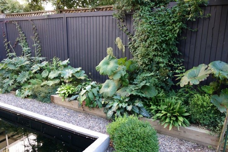 Trend Alert Black Fences Gardenista Also Love The 400 x 300