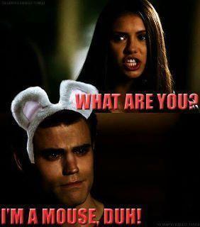 elena stefan im a mouse