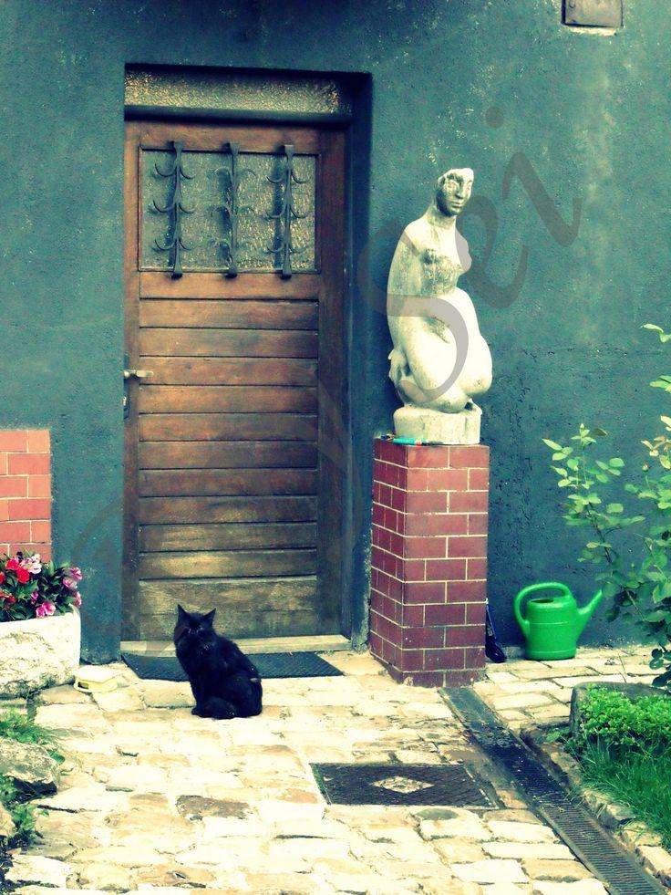 Dvě+kočky+u+dveří+Autorská+barevná+fotografie+ve+vysokém+rozlišení+na+kvalitním+fotopapíře+Kodak.+Lze+si+vybrat+mezi+leskem+a+matem.+Fotografie+zasílám+v+pevných+deskách.