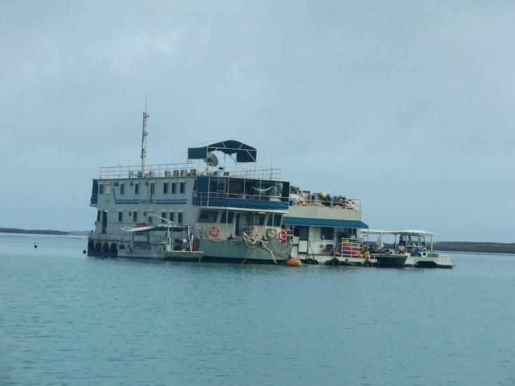 pearl farm houseboat