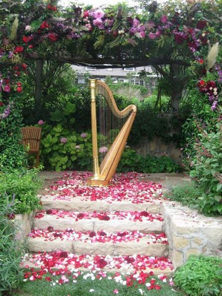 Laurie's gold harp on a bed of rose  petals at San Ysidro Ranch wedding.