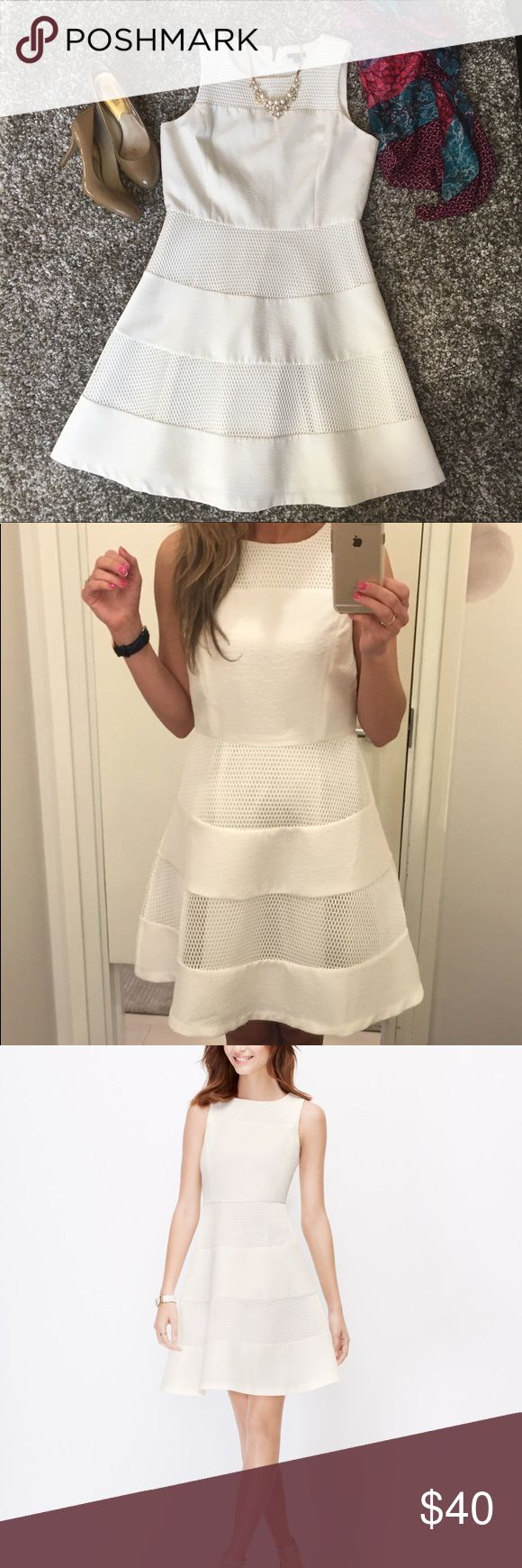 Ann Taylor White Mesh dress size 8 Ann Taylor White Mesh dress size 8. Freshly washed and in excellent condition. Fit and flare style that is very flattering. Zips up the back. Fully lined. Ann Taylor Dresses Midi