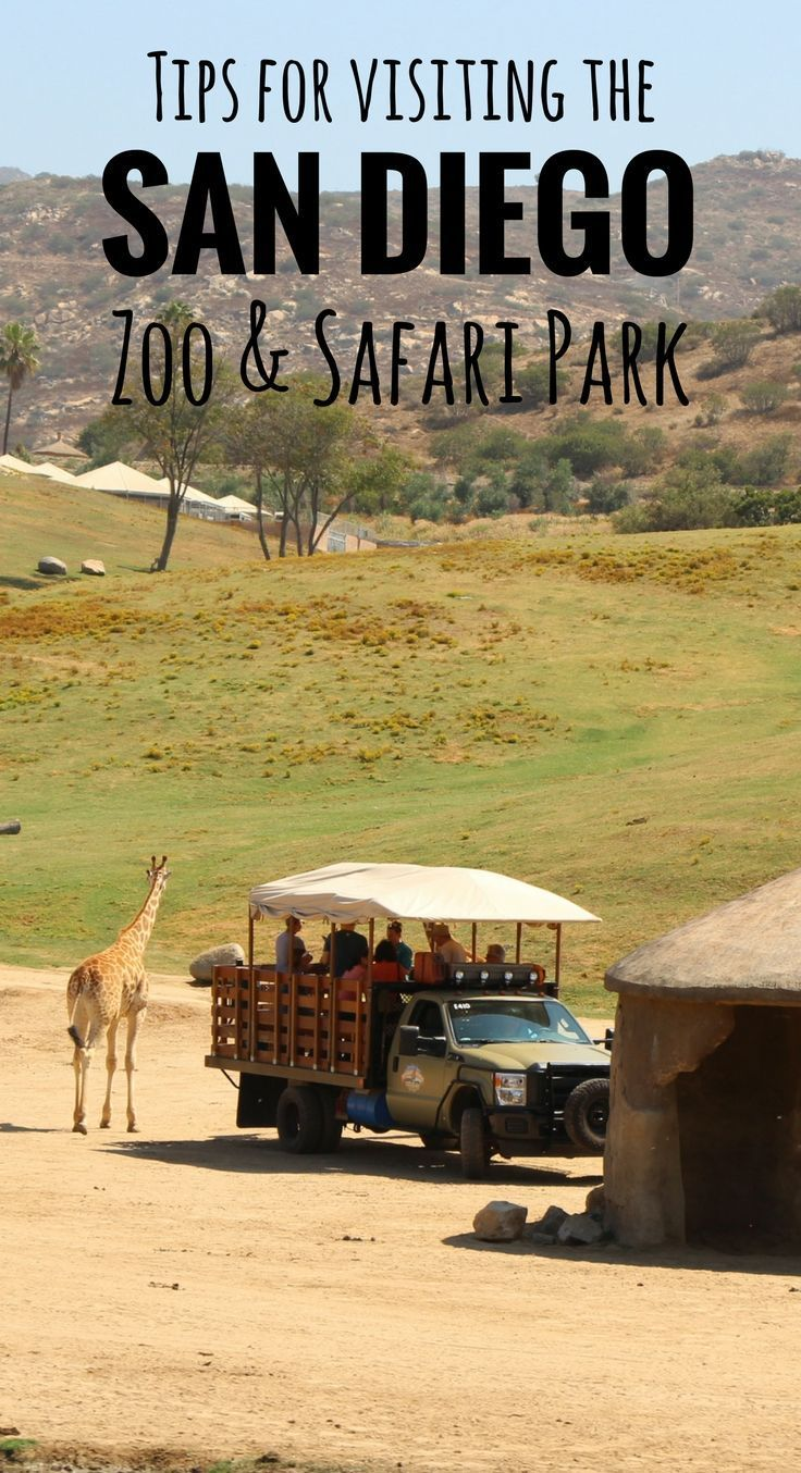 Our best tips for the San Diego Zoo & Safari park| Family Travel | Travel with baby, infant, toddler | Traveling with baby | Family Travel | San Diego with a baby | California Family Vacation | Balboa Park