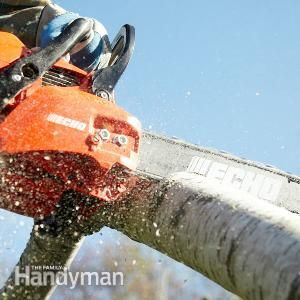 Chainsaw Reviews   The Family Handyman