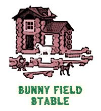Lincoln Logs Sunny Field Stable