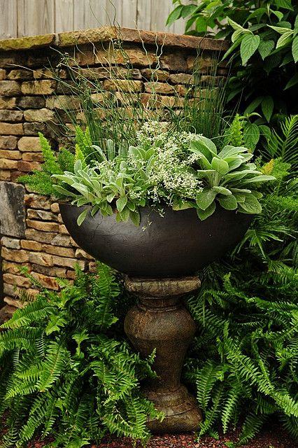 beautiful!: Gardens Ideas, Container Gardens, Gardens Design Ideas, Stones Wall, Lamb Ears, Interiors Design, Interiors Gardens, Shades Gardens, Asparagus Ferns