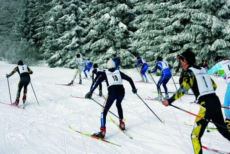 Centre école de ski de fond - Belmont - #Alsace