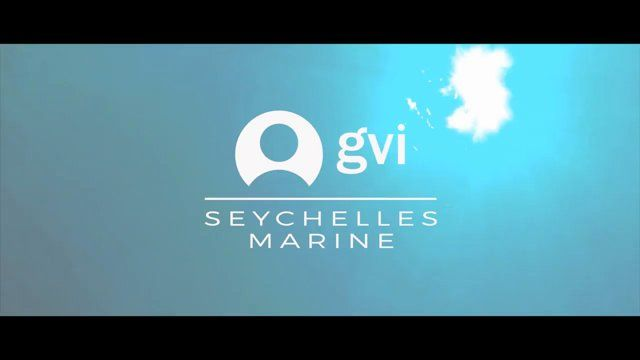 Live in paradise, surrounded by incredible fauna and flora while contributing to vital marine conservation policies with our partners The Seychelles National Parks Authority.  Find out more: www.gvi.co.uk/volunteer-in-seychelles