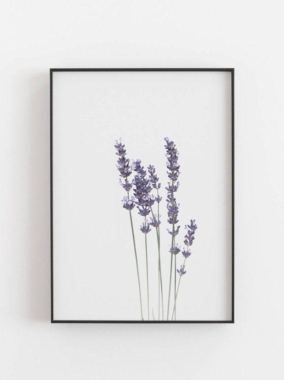 Lavender Print,Watercolour Print,Botanical Print,Lavender Wall Art,Botanical Wall Art,Lavender Art Print,Watercolor Lavender,Botanical Plant