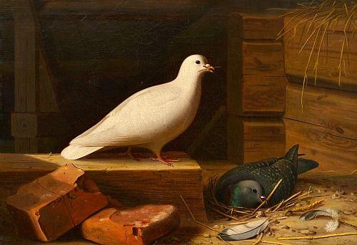 Ferdinand von Wright White Dove 1860