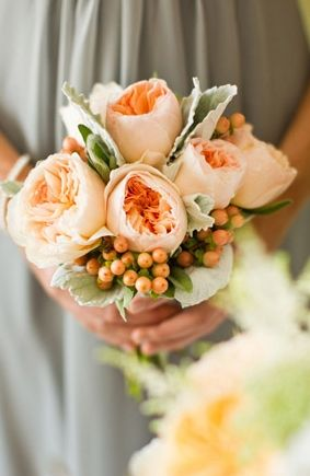small bouquet of juliet peach garden roses, hypernicum berries and dusty miller