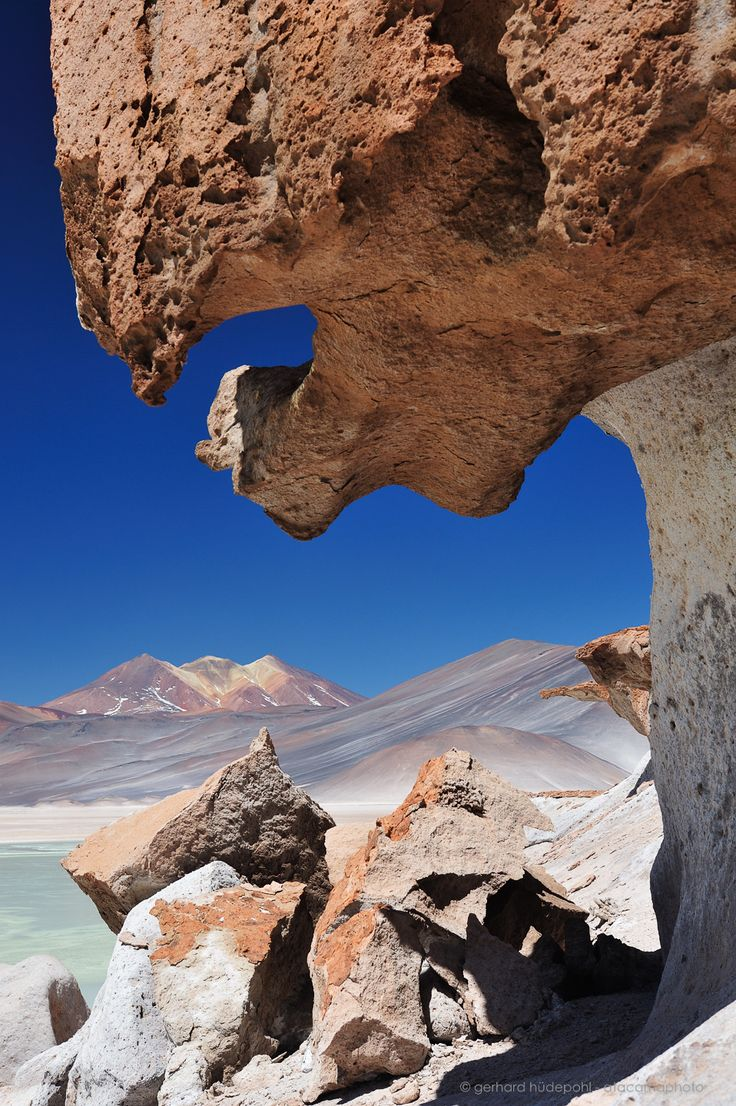A selection of the best photos of Atacamaphoto Gallery. Nature photos of the Atacama desert, Patagonia, South Georgia island and other remote locations.