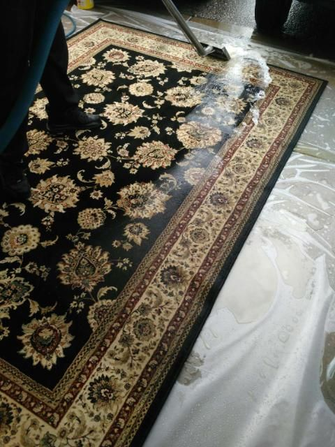 Dirty Rugs In Tucson Pet Problems Allow Our Trained Specialists At T Carpet Stain Removalcarpet Stainstucsoncleaning
