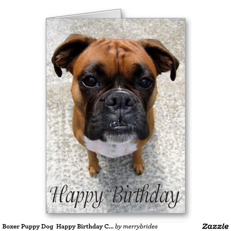 Happy Birthday idbowman! 799755960f1454a411d017c2cfc57c8f--happy-birthday-cards-happy-birthdays
