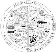 Resultado de imagen para plato del buen comer para colorear