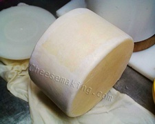 Making your own cheese  food receipes