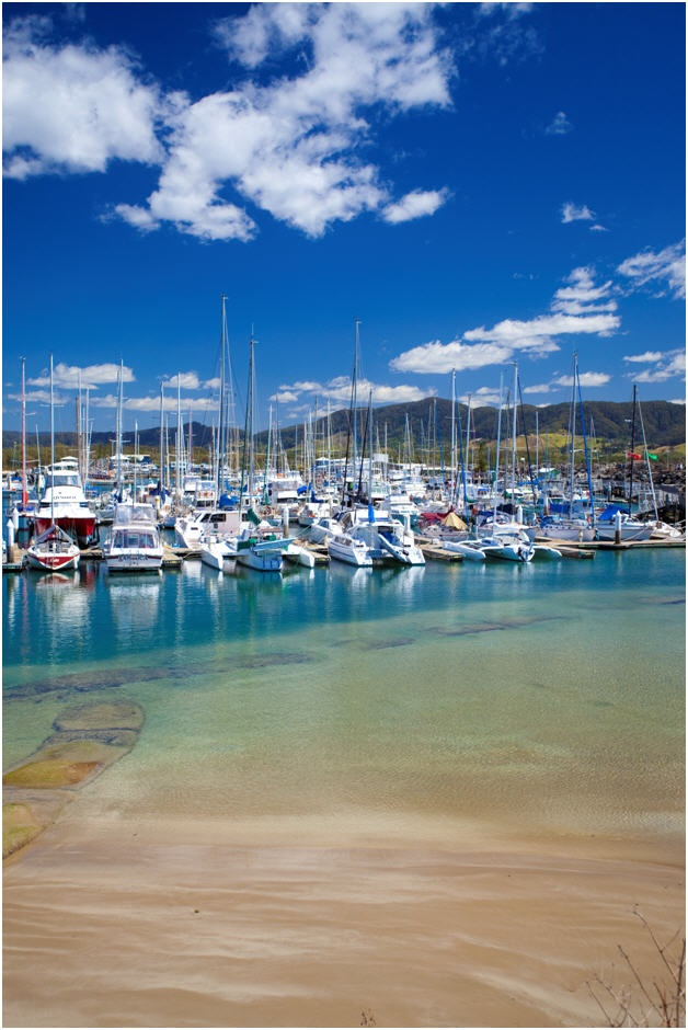 Watch the boats at Coffs Harbour (look at the colour of the water!)