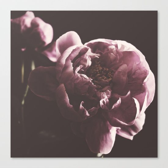 Peonies and lovely lighting, take time to enjoy these lovely flowers in your home decor.