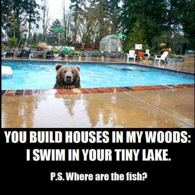 P.S. Where are the fish?