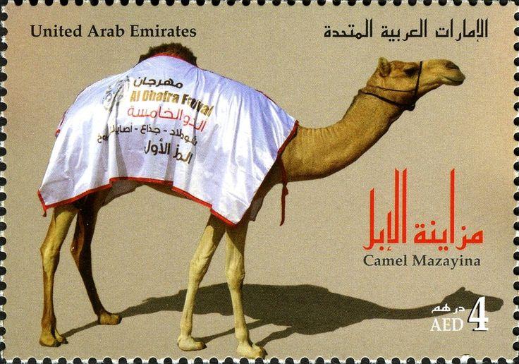 Stamp: Dromedary (Camelus dromedarius) (United Arab Emirates) (Mazaya-Dhafra-Camel Festival) Mi:AE 1072,WAD:AE032.11