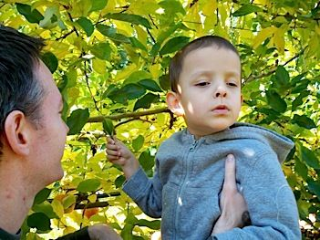 Take your child on an Adventure Walk! Getting your blind child outside and moving around in the community can help them develop motor skills as well as Orientation and Mobility skills. Susan Shier Lowry (COMS, CTVI) gives you tips on how to make this work!