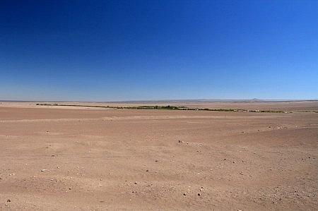 Oasis de Pica // Desierto de Atacama Día 5