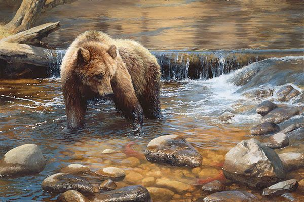 Bonnie Marris - Fish Tales - grizzly bear painting
