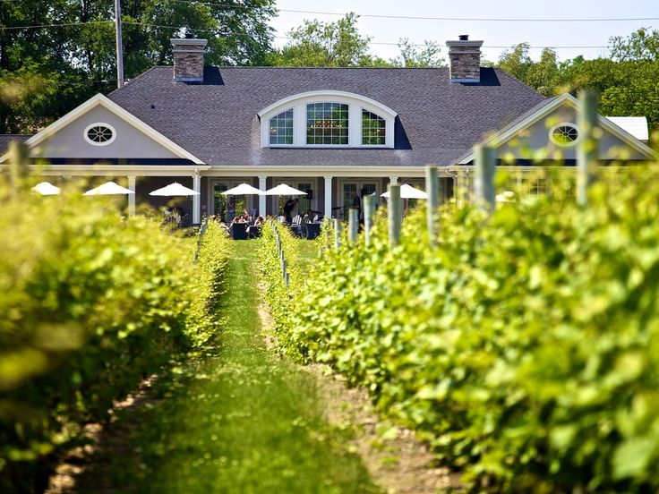 A slew of wineries on Long Island's North Fork prove you don't need to trek out to Napa Valley to visit wine country.