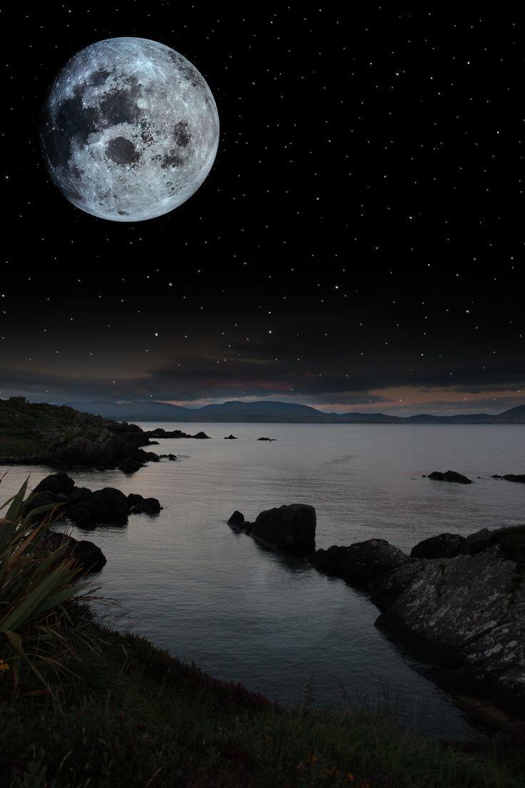 Van Morrison Magic Time 168 best images about ...